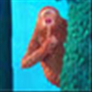 missinglink_icon.jpg by Musselmink
