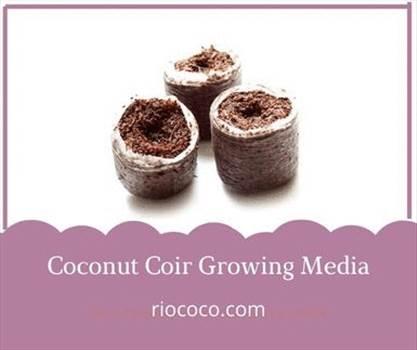 Coconut Coir Growing Media.gif by Riococo