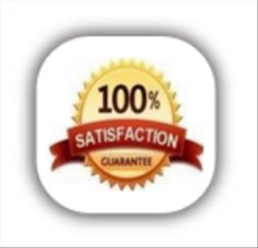 Satisfaction Icon.png by Trip Voltage