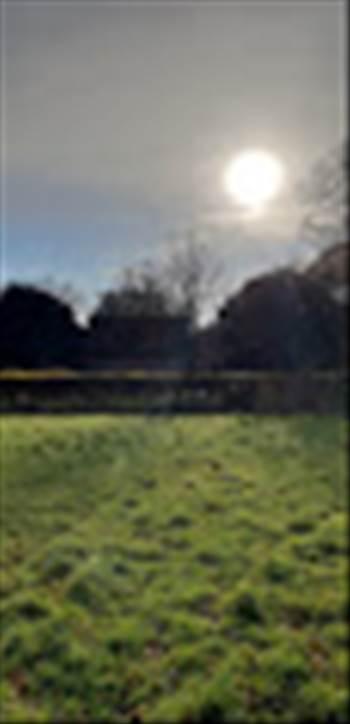 Terwick 4 Dec 2018 7.jpg -