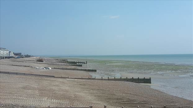 Worthing 5 23 May 2018.jpg -