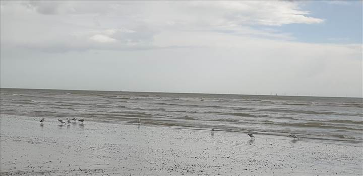 Littlehampton East Beach 14 18 Mar 2019.jpg -