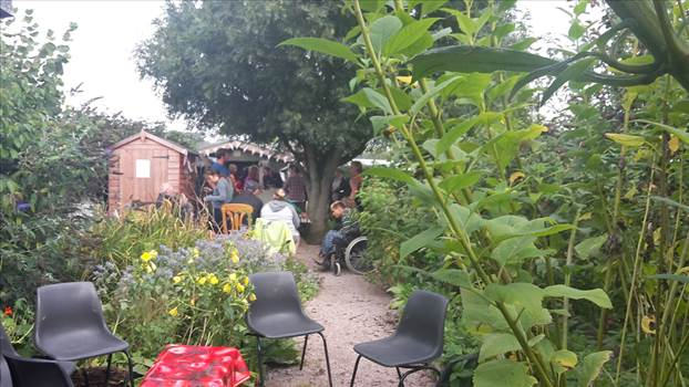 Petworth Community gardens 26 Sept 2017 (3).png by Mo