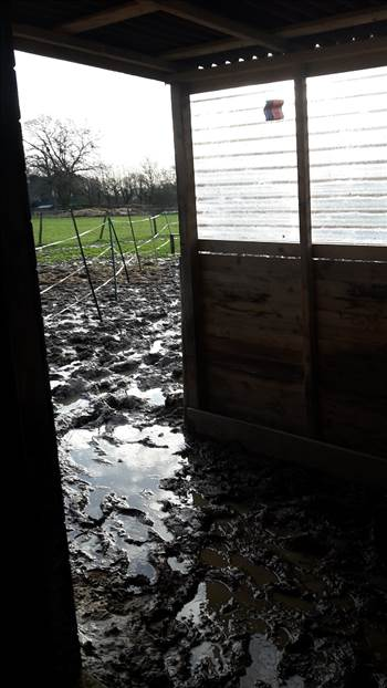 Bob and shabba's field shelter Mud Mud Mud. 5 Jan 2018 resized.png by Mo