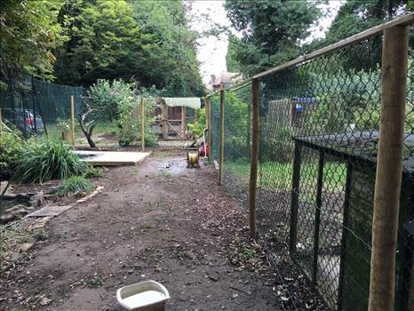 bird enclosure refurb.jpeg by Mo