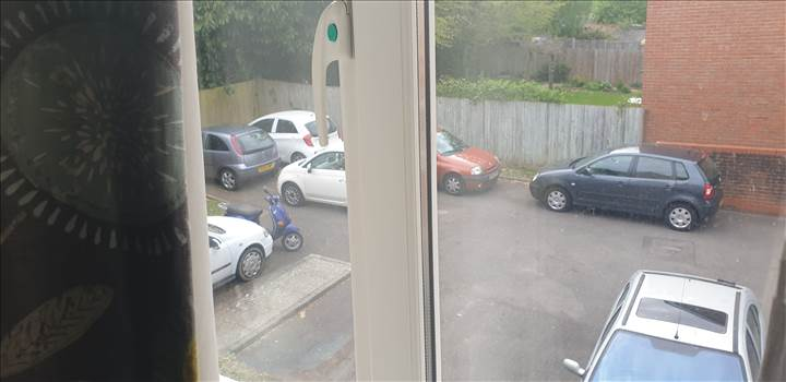 cars cars cars.jpg -