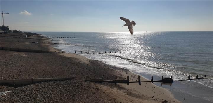 worthing pier 29 Apr 2019.jpg by Mo