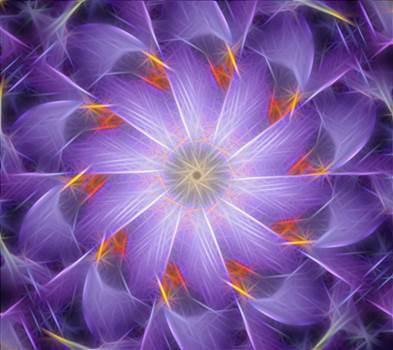 purpleflowers2.png by mackenzieh