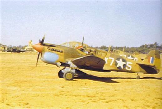 P-40F Warhawk 5.jpg by Magpie 22