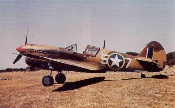 P-40F Warhawk 2.jpg by Magpie 22