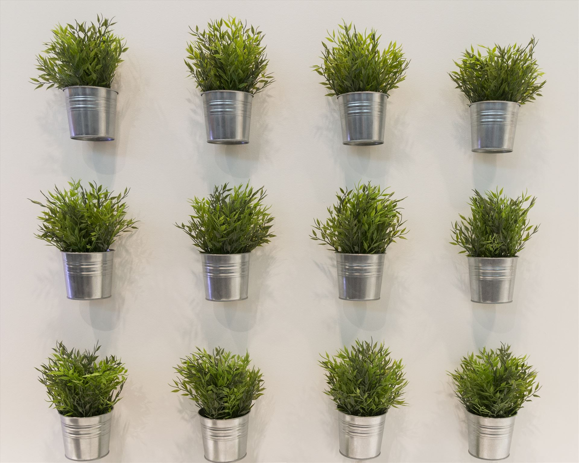 Green Green plants on wall in vertical lines by Pucko