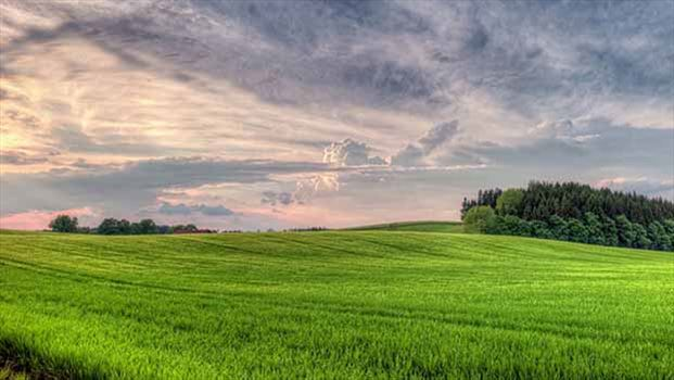 1-Land-copy.jpg by mohsen dehbashi