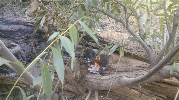 بي مهري در به آتش کشيدن درختان کوهسنگ توسط مهمانان طبيعت سنگان عده اي براي لحظه اي سرگرمي طبيعت را براي هميشه از بين ميبرند94/4/30 by mohsen dehbashi