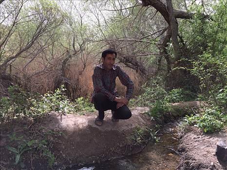 محسن دهباشی by mohsen dehbashi