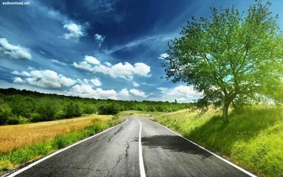 دانلود-عکس-جاده-رمانتیک-2_1882673960.jpg by mohsen dehbashi