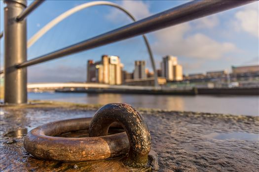 On the banks of the Tyne by philreay