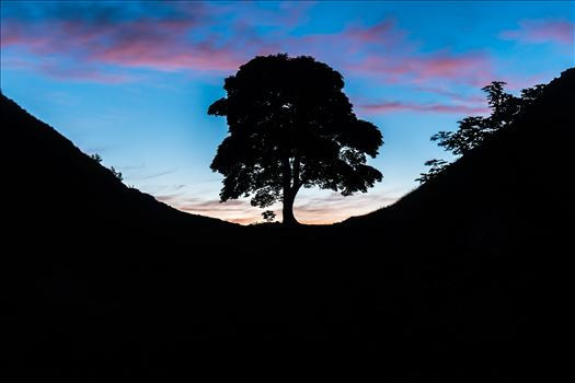 Sycamore Gap, Northumberland 01 by philreay