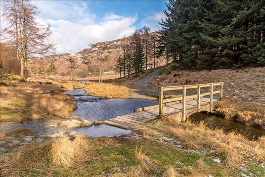 Blea Tarn, Gt Langdale by philreay