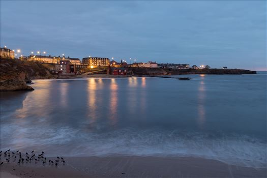 Cullercoats bay at blue hour by philreay