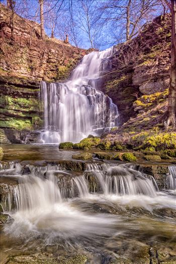 Scaleber Force by philreay