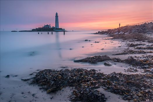 Sunrise at St Mary`s lighthouse & island, Whitley Bay 005 by philreay