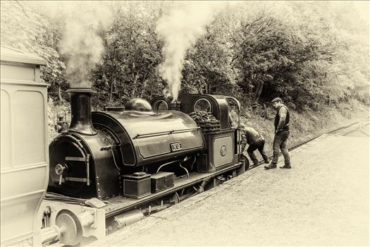 Steam train at Tanfield railway by philreay