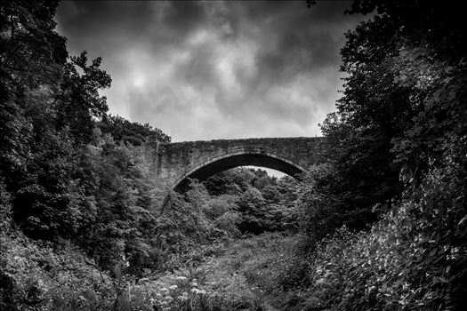 Causey Arch by philreay
