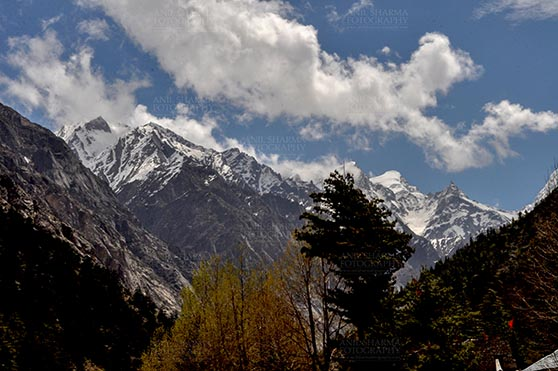 Travel- Gangotri (Uttarakhand) Gangotri, Uttarakhand, India- May 15, 2013: : Snow covered Himalalyan peaks all around at Bhagirathi valley at Gangotri, Uttarkashi, Uttarakhand, India. by Anil Sharma Fotography