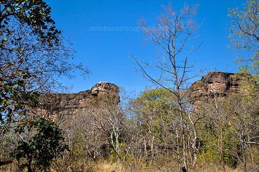 Archaeology- Bhimbetka Rock Shelters (India) - Entrance to Bhimbetka archaeological site in Ratapani Sanctuary of Raisen District of Madhya Pradesh, India.\r\n\r\nThe Bhimbetka rock shelters are an archaeological site of the paleolithic, exhibiting the earliest traces of human life on the indian subcontin