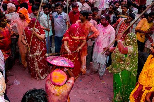 Festivals- Lathmaar Holi of Barsana (India) - A man from Nandgaon protecting himself from womens of Barsana hitting on his shield with their sticks during Lathmaar Holi at Barsana.