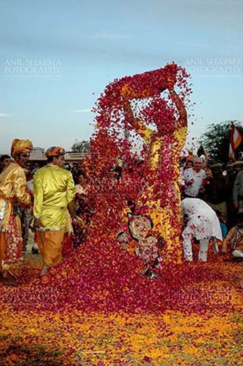Festivals- Holi and Elephant Festival (Jaipur) - Local people sprinkling rose and merigold petals on Radha-Krishana at Holi and Elephant Festival at jaipur, Rajasthan (India).