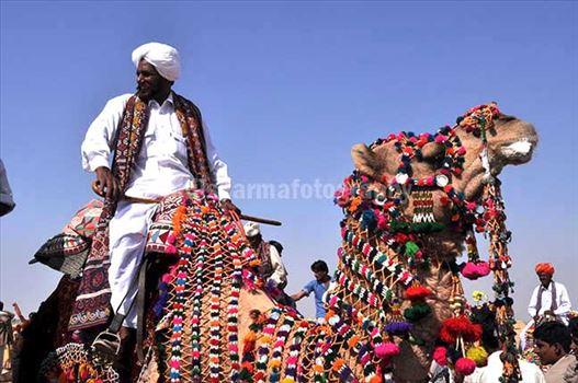 Festivals- Jaisalmer Desert Festival, Rajasthan by Anil Sharma Fotography