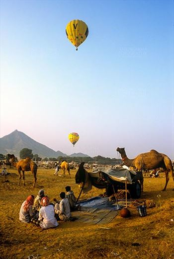 Fairs- Pushkar Fair (Rajasthan) - Pushkar, Rajasthan, India- May 23, 2008: Hot air balloons in the sky and some farmers with their camels at Pushkar fair, Rajasthan, India.
