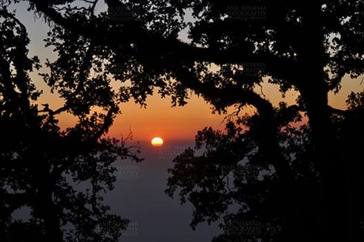 Travel- Nainital (Uttarakhand) - Nainital, Uttarakhand, India- November 11, 2015: Sun set view from Cheena peak reserved forest area at Mallital, Nainital, Uttarakhand, India.