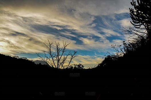 Clouds- Sky with Clouds (Lansdowne) by Anil