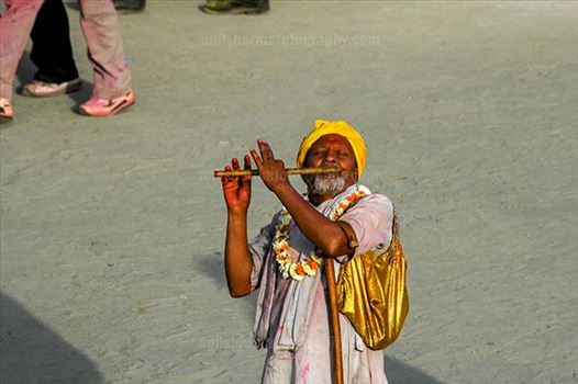 Festivals- Lathmaar Holi of Barsana (India) - An old men playing flute at Barsana, Mathura, India.
