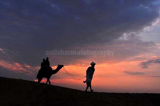 Festivals- Jaisalmer Desert Festival, Rajasthan by Anil