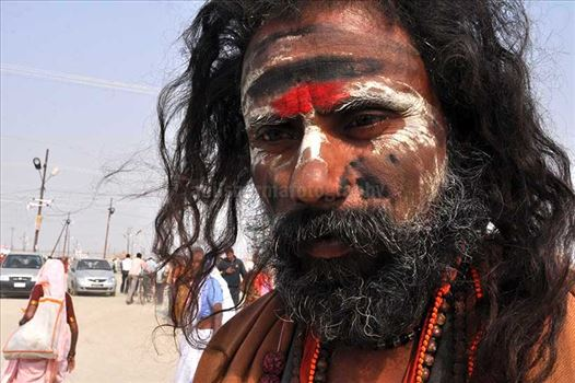 Culture- Aghori Sadhu, Uttar Pradesh (India). - Aghori Sadhu with long hairs, ash and tilak on face wearing rudraksha bead at Mahakumbh mela, Allahabad, Uttar Pradesh, India.