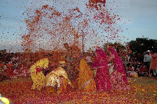 Festivals- Holi and Elephant Festival (Jaipur) - People celebrating Holi Festival with flowers at jaipur, Rajasthan (India).