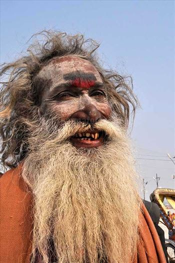 Culture- Aghori Sadhu, Uttar Pradesh (India). - Smile of an old Aghori Sadhu with long hairs, ash on face at Mahakumbh Prayag, Allahabad, Uttar Pradesh (India).