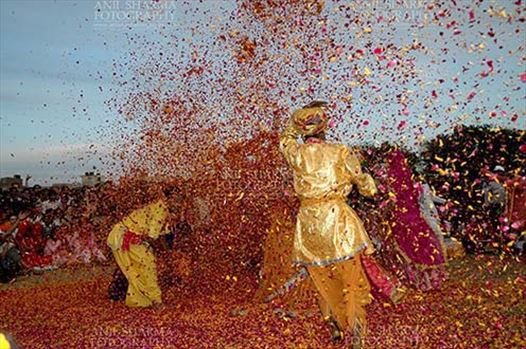 Festivals- Holi and Elephant Festival (Jaipur) - Local people celebrating Holi Festival with flowers at Holi and Elephant Festival at jaipur, Rajasthan (India).