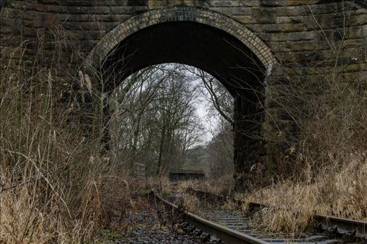 Abandoned Railway Bridge and Tunnel by AJ Stoves Photography