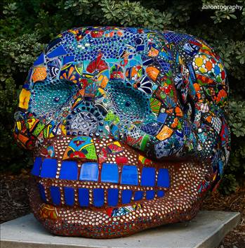 Skull Candy.jpg - undefined