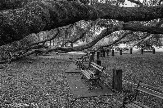 PARK (112 of 1).jpg - undefined
