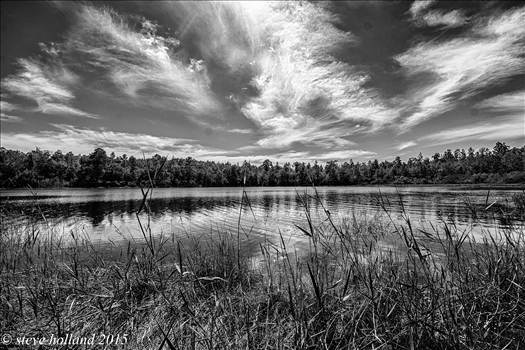 gen pond (112 of 1).jpg - undefined
