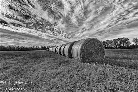 hay roll.jpg - undefined