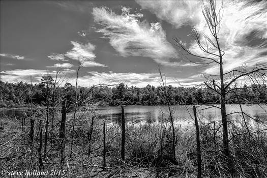 pond (112 of 1).jpg - undefined