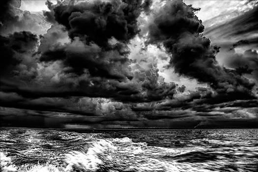 gulf (112 of 1)-5.jpg by Steve Holland