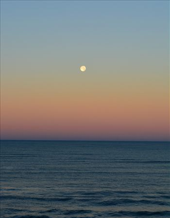 Winter Moon by Bridget Oates Photography