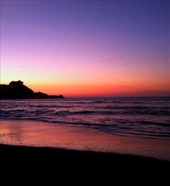 Purple Pedro Point by Bridget Oates Photography